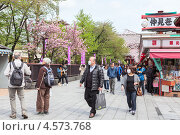 Купить «Цветущая японская сакура перед магазинами на улице Nakamise-dori, храм Senso-ji, Токио, Япония», фото № 4573768, снято 10 апреля 2013 г. (c) Кекяляйнен Андрей / Фотобанк Лори