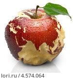 Купить «Яблоко с силуэтами континентов», иллюстрация № 4574064 (c) Антон Балаж / Фотобанк Лори