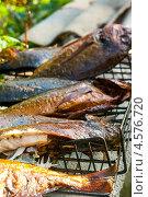 Купить «Жареная на решётке рыба», эксклюзивное фото № 4576720, снято 9 мая 2010 г. (c) Давид Мзареулян / Фотобанк Лори