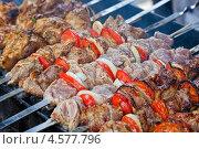Купить «Шампуры с аппетитным сочным шашлыком на мангале», фото № 4577796, снято 16 февраля 2019 г. (c) FotograFF / Фотобанк Лори