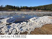 Деревня Усть-Мана, вскрытие горной реки ото льда. Стоковое фото, фотограф Елена Бачурина / Фотобанк Лори