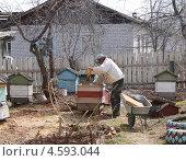 Купить «Пчеловод на пасеке весной», фото № 4593044, снято 5 мая 2013 г. (c) Анна  Устинова / Фотобанк Лори