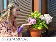 Купить «Молодая женщина с гортензией», эксклюзивное фото № 4597076, снято 5 мая 2013 г. (c) Ольга Линевская / Фотобанк Лори