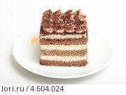 Купить «Пирожное Тирамису», эксклюзивное фото № 4604024, снято 9 мая 2013 г. (c) Яна Королёва / Фотобанк Лори