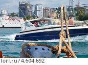 Прогулка на яхте. Стоковое фото, фотограф Татьяна Глущенко / Фотобанк Лори