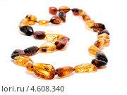Купить «Янтарное ожерелье», фото № 4608340, снято 16 августа 2010 г. (c) Елена Архангельская / Фотобанк Лори