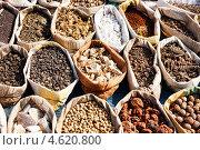 Купить «Разнообразие специй на рынке в Пушкаре, Индия», фото № 4620800, снято 20 ноября 2012 г. (c) photoff / Фотобанк Лори