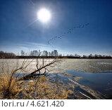 Купить «Весна. Тающий лед на озере», фото № 4621420, снято 9 апреля 2008 г. (c) photoff / Фотобанк Лори