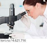 Купить «Ученая в лаборатории смотрит в микроскоп, вод сбоку», фото № 4621716, снято 20 апреля 2011 г. (c) Wavebreak Media / Фотобанк Лори