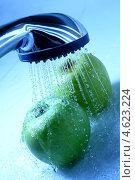 Купить «Мытье яблок», фото № 4623224, снято 31 июля 2008 г. (c) Иван Михайлов / Фотобанк Лори