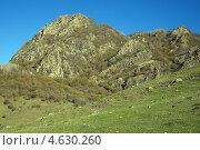Купить «Горные склоны, апрель», фото № 4630260, снято 28 апреля 2013 г. (c) Игорь Веснинов / Фотобанк Лори