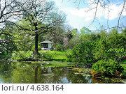 Купить «Японский садик в Ботаническом саду в Москве, весна», фото № 4638164, снято 10 мая 2013 г. (c) Людмила Герасимова / Фотобанк Лори