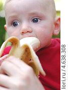 Купить «Маленький мальчик ест банан», фото № 4638308, снято 26 апреля 2013 г. (c) Шутов Игорь / Фотобанк Лори