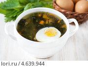 Купить «Суп из крапивы с яйцом», фото № 4639944, снято 18 марта 2013 г. (c) Darkbird77 / Фотобанк Лори