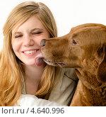 Купить «Собака облизывает лицо смеющейся молодой девушки», фото № 4640996, снято 10 апреля 2013 г. (c) CandyBox Images / Фотобанк Лори