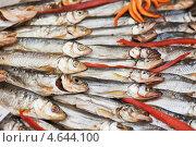 Купить «Копченая рыба на рыбном рынке», фото № 4644100, снято 10 апреля 2013 г. (c) Jan Jack Russo Media / Фотобанк Лори