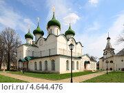 Купить «Суздаль. Спасо-Евфимиев монастырь», эксклюзивное фото № 4644476, снято 10 мая 2013 г. (c) Дмитрий Неумоин / Фотобанк Лори