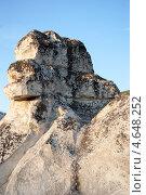 Малая дива (2013 год). Редакционное фото, фотограф Андрей Старинин / Фотобанк Лори