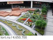 Купить «Внутренний дворик аэропорта Сочи», эксклюзивное фото № 4650700, снято 6 мая 2013 г. (c) Юрий Морозов / Фотобанк Лори