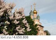 Купить «Москва, Новодевичий монастырь весной», эксклюзивное фото № 4650808, снято 20 мая 2013 г. (c) Дмитрий Неумоин / Фотобанк Лори