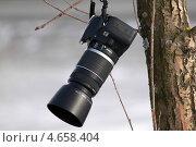 Зеркальный фотоаппарат Canon висит на дереве (2013 год). Редакционное фото, фотограф Олег Пластинин / Фотобанк Лори