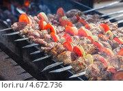 Купить «Аппетитный сочный шашлык жарится на мангале», фото № 4672736, снято 16 февраля 2019 г. (c) FotograFF / Фотобанк Лори