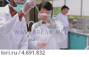 Купить «Two chemists experimenting with the green and red liquid in test-tube», видеоролик № 4691832, снято 5 апреля 2020 г. (c) Wavebreak Media / Фотобанк Лори
