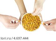 Купить «Жареная кукуруза в миске и руки, изолированные на белом фоне», фото № 4697444, снято 31 мая 2011 г. (c) Jan Jack Russo Media / Фотобанк Лори