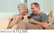 Купить «Lovely retired couple enjoying a glass of red wine», видеоролик № 4712500, снято 10 июля 2020 г. (c) Wavebreak Media / Фотобанк Лори