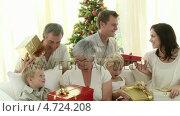Купить «Family having a great time at Christmas», видеоролик № 4724208, снято 23 августа 2019 г. (c) Wavebreak Media / Фотобанк Лори
