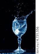 Купить «Всплеск алкогольного напитка в рюмке», фото № 4731556, снято 25 сентября 2008 г. (c) Иван Михайлов / Фотобанк Лори