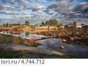 Сельская идиллия. Стоковое фото, фотограф Александр Коротков / Фотобанк Лори
