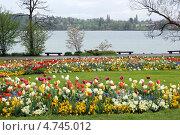 Купить «Остров Майнау», фото № 4745012, снято 3 мая 2013 г. (c) Щелкотунова Любовь / Фотобанк Лори