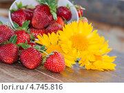 Ягоды клубники и желтые цветы. Стоковое фото, фотограф Трофимова Мария / Фотобанк Лори