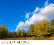 Осень. Стоковое фото, фотограф Вячеслав Андреев / Фотобанк Лори