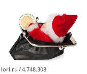 Рождественский кошелёк. Стоковое фото, фотограф Marina Appel / Фотобанк Лори