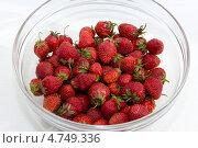 Купить «Клубника свежая в миске. Урожай», фото № 4749336, снято 13 июня 2013 г. (c) Ирина Геращенко / Фотобанк Лори