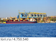 Купить «Грузовой морской порт в Севастополе, Крым, Украина», фото № 4750540, снято 2 октября 2012 г. (c) Анна Мартынова / Фотобанк Лори