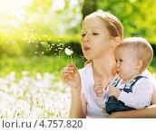 Купить «Счастливая семья. Мама и ребенок дуют на цветок одуванчика летом в парке», фото № 4757820, снято 3 июня 2013 г. (c) Евгений Атаманенко / Фотобанк Лори