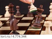 Купить «Шах и мат. Пешка побивает короля», фото № 4774344, снято 23 декабря 2012 г. (c) Андрей Попов / Фотобанк Лори