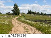 Дорога в деревню (2013 год). Стоковое фото, фотограф Николай Мухорин / Фотобанк Лори