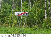 Купить «Дорожный указатель при выезде из города Петушки. Трасса М7», эксклюзивное фото № 4785484, снято 24 мая 2013 г. (c) Алёшина Оксана / Фотобанк Лори