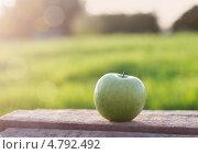Купить «Зелёное яблоко на деревянном столе», фото № 4792492, снято 17 июня 2019 г. (c) Майя Крученкова / Фотобанк Лори