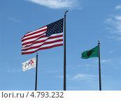 Американский флаг (2008 год). Редакционное фото, фотограф Константин Саночкин / Фотобанк Лори