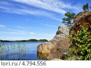 Купить «Скалистый берег Ладожского озера», фото № 4794556, снято 23 июня 2013 г. (c) Владимир Кошарев / Фотобанк Лори