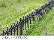 Купить «Металлическая ограда», фото № 4795460, снято 28 мая 2013 г. (c) Александр Романов / Фотобанк Лори
