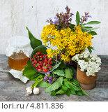Купить «Народная медицина, натюрморт», эксклюзивное фото № 4811836, снято 9 июня 2013 г. (c) Короленко Елена / Фотобанк Лори