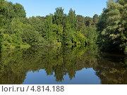 Купить «Летний пейзаж с деревьями, отражающимися в небольшом лесном озере», фото № 4814188, снято 4 июня 2013 г. (c) Михаил Марковский / Фотобанк Лори