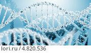 Купить «Геном человека - стилизованное изображение молекулы ДНК», фото № 4820536, снято 19 февраля 2020 г. (c) Sergey Nivens / Фотобанк Лори