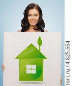 Купить «Привлекательная девушка держит в руках баннер с нарисованным зеленым домом», фото № 4825664, снято 6 января 2013 г. (c) Syda Productions / Фотобанк Лори